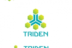 triden_industries